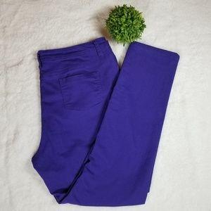 Ashley Stewart Purple Plus Size Denim